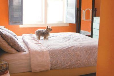 BedroomEKumler