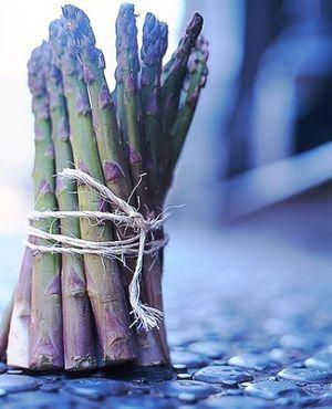 Asparagus_Vacco