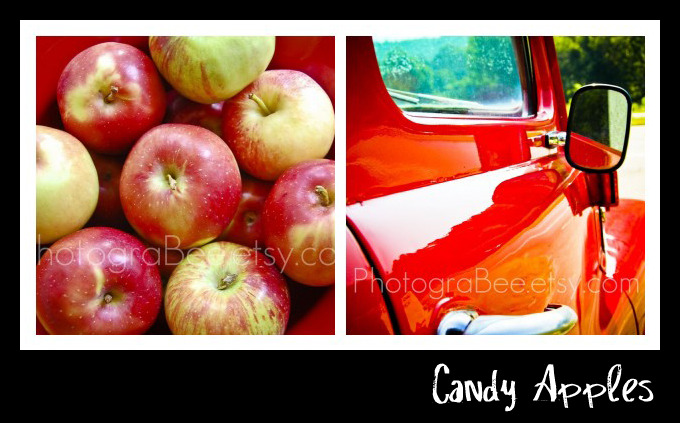 Photograbee_Candy Apples