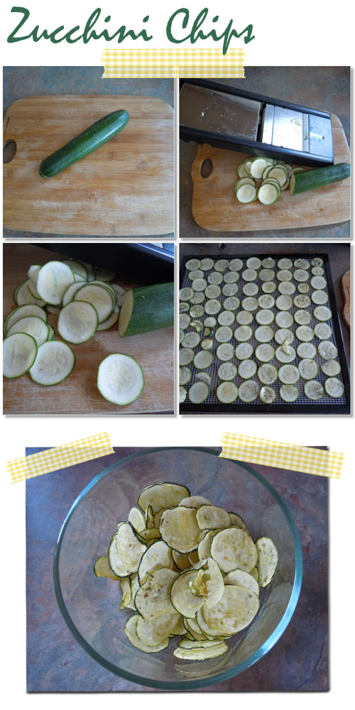 Vintage indie organic whole living recipe excalibur dehydrator zucchini chips forumfinder Gallery