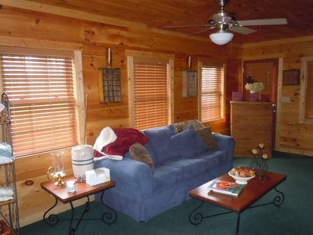 Dreamscape Hideaway Living Room