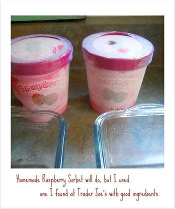 Raspberry Sorbet _2