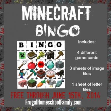 Minecraft-bingo-pin