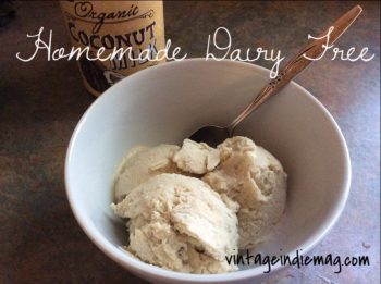 Dairy Free Peanut Butter Banana Ice Cream