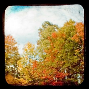 Autumnartbymonarch_6