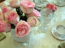 Esperance_roses_6